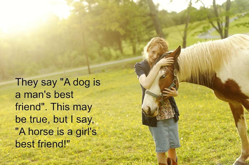 Horse Quote 37 Picture Quote #1