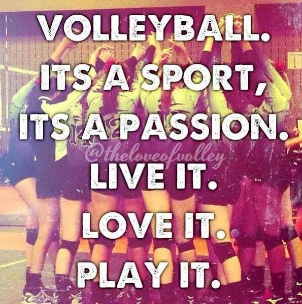 Volleyball Quote | Quote Number 581546 | Picture Quotes