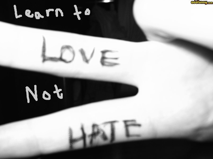 Love Not Hate Quote 1 Picture Quote #1