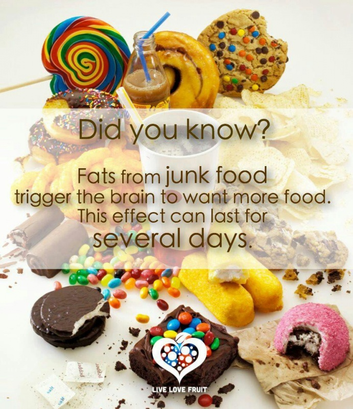 Junk Food Quote 1 Picture Quote #1