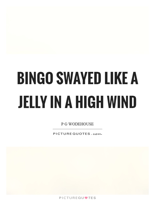 Bingo swayed like a jelly in a high wind Picture Quote #1