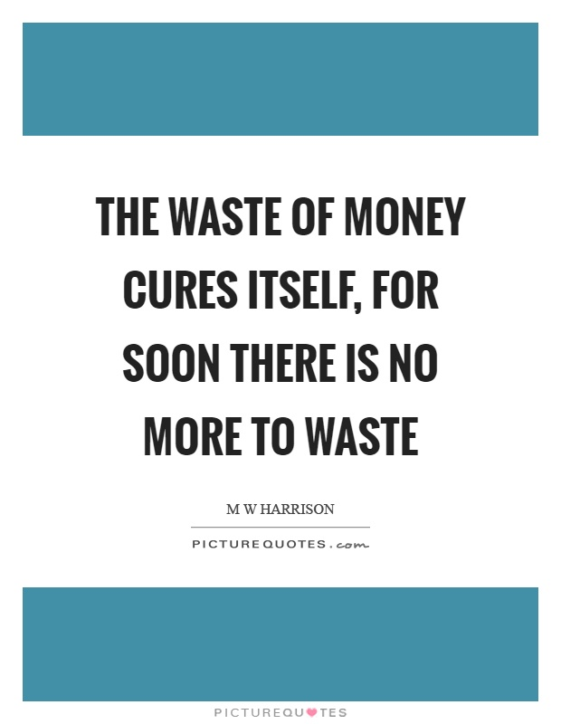 The waste of money cures itself, for soon there is no more to waste Picture Quote #1