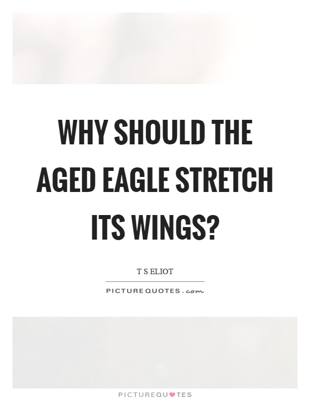 Why should the aged eagle stretch its wings? Picture Quote #1