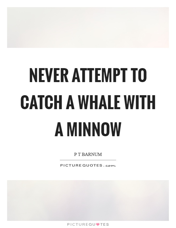 Never attempt to catch a whale with a minnow Picture Quote #1