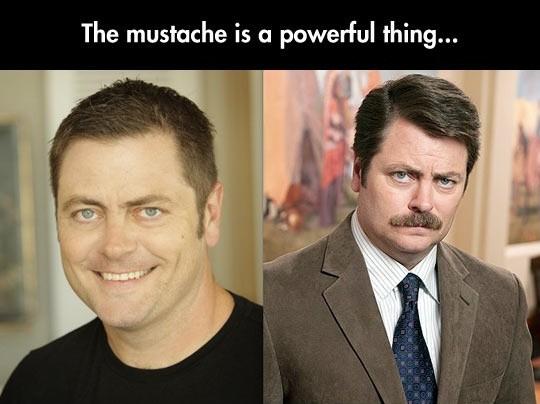 Ron Swanson Mustache Quote 1 Picture Quote #1