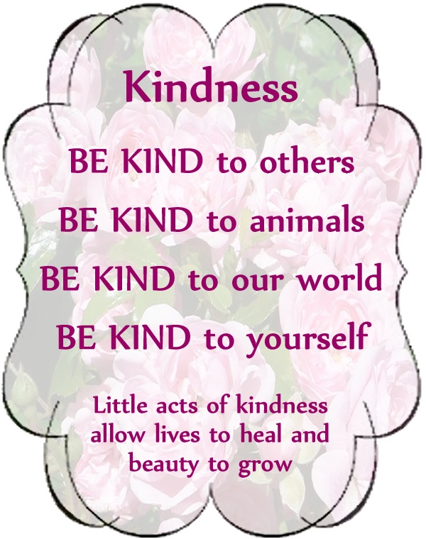 Kindness Quote 1 Picture Quote #1