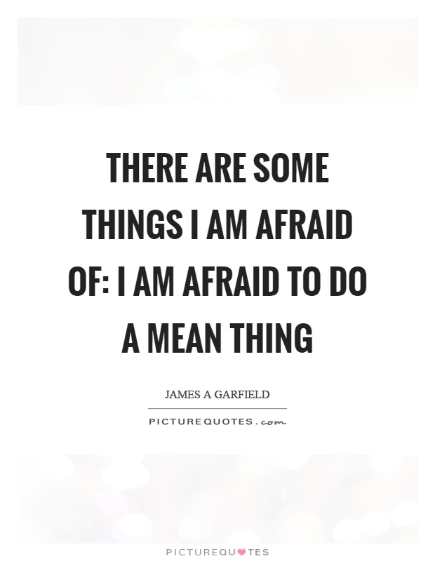 There are some things I am afraid of: I am afraid to do a mean thing Picture Quote #1