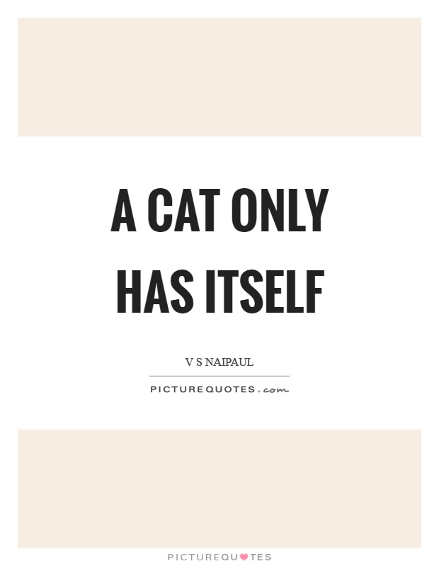 A cat only has itself Picture Quote #1