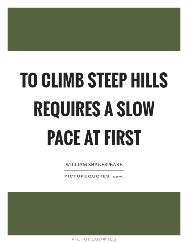 To climb steep hills requires a slow pace at first Picture Quote #1