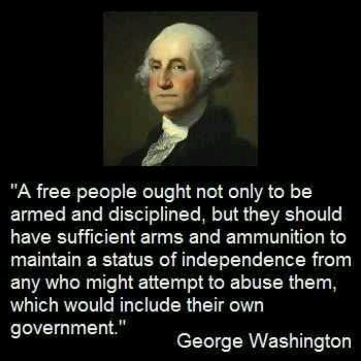 Quote On Guns George Washington 1 Picture Quote #1