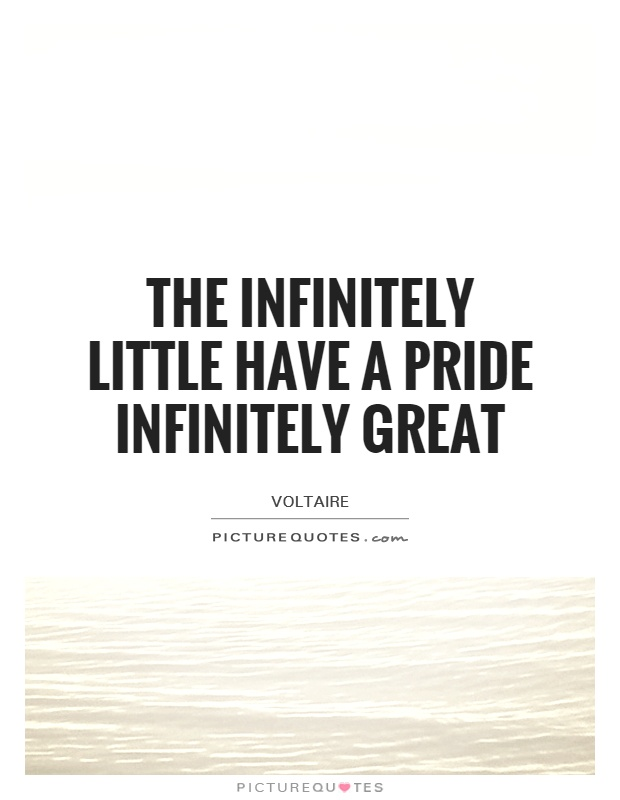 The infinitely little have a pride infinitely great Picture Quote #1