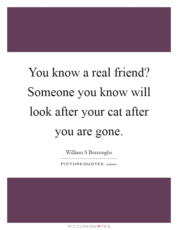 You know a real friend? Someone you know will look after your cat after you are gone Picture Quote #1