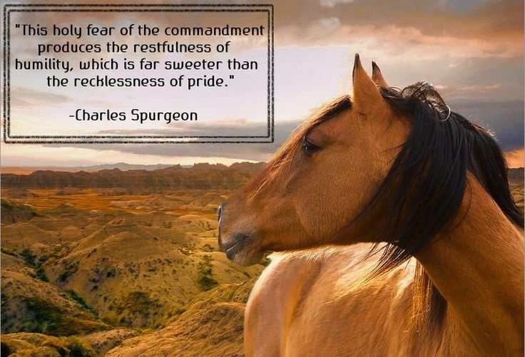 Charles Spurgeon Quote 4 Picture Quote #1