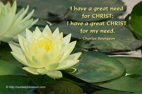 Charles Spurgeon Quote 7 Picture Quote #1