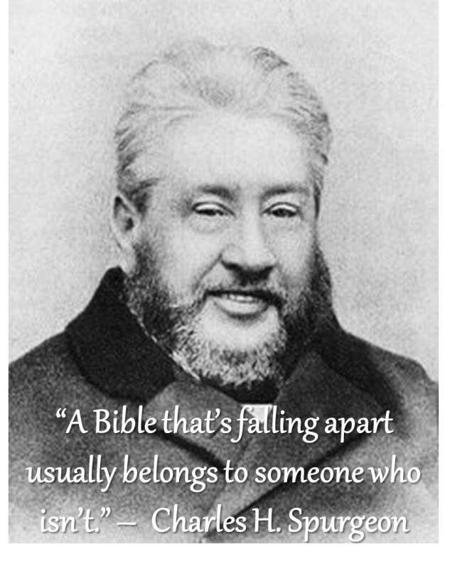 Charles Spurgeon Quote 16 Picture Quote #1