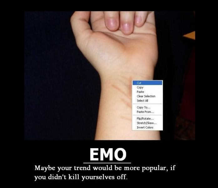 Funny Emo Quote 2 Picture Quote #1