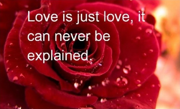 Romantic Love Quote 3 Picture Quote #1