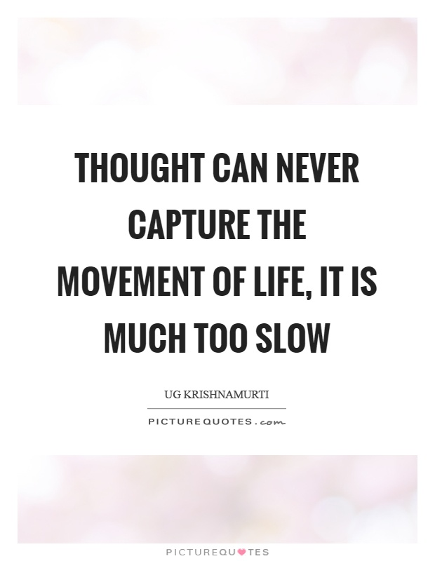 Thought can never capture the movement of life, it is much too slow Picture Quote #1
