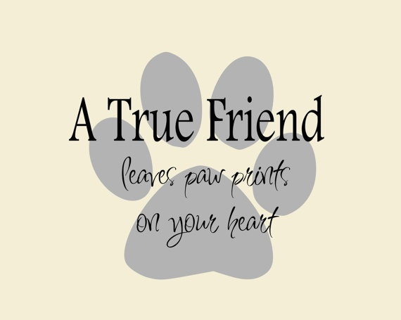 Cute Friend Quote Tumblr : Cute friendship quotes sayings picture