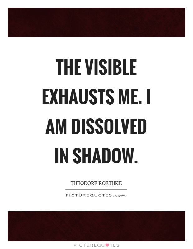 The visible exhausts me. I am dissolved in shadow Picture Quote #1