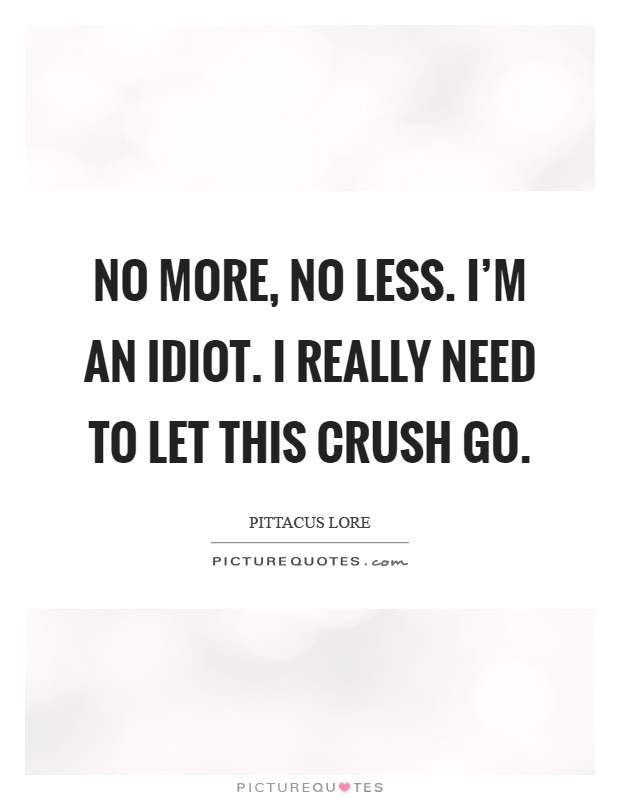 No more, no less. I'm an idiot. I really need to let this crush go Picture Quote #1