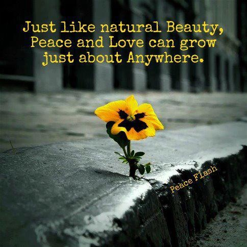 Inspirational Quote About Natural Beauty 1 Picture Quote #1
