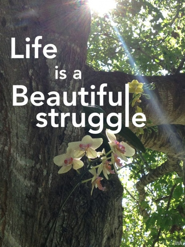 Life Is A Beautiful Struggle Quote 1 Picture Quote #1