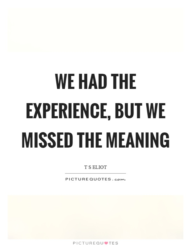 We had the experience, but we missed the meaning Picture Quote #1