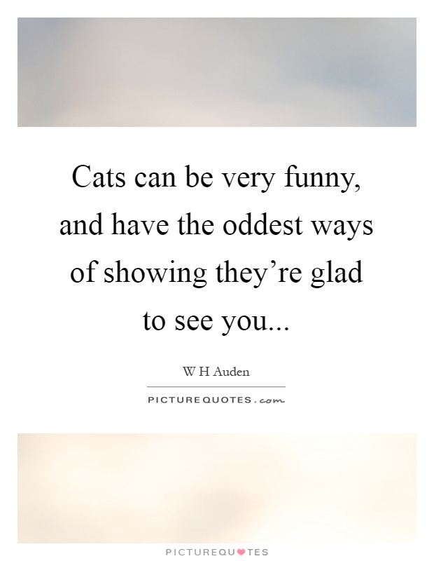 Cats can be very funny, and have the oddest ways of showing they're glad to see you Picture Quote #1
