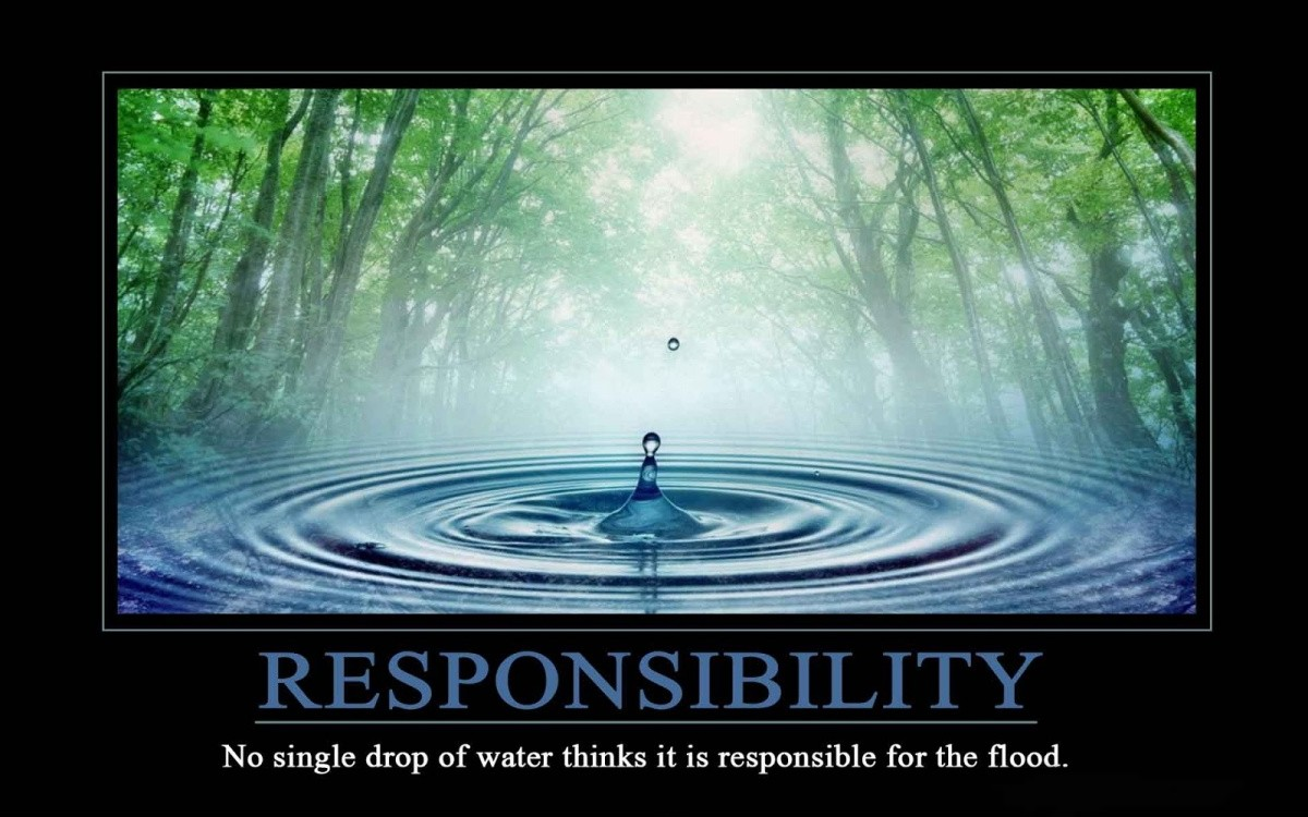 Responsibility Quote 1 Picture Quote #1