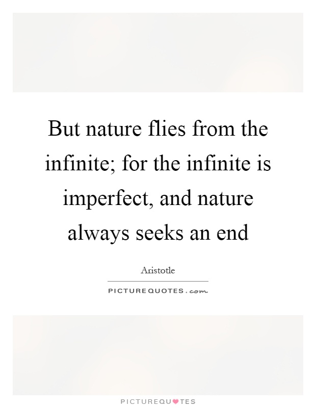 But nature flies from the infinite; for the infinite is imperfect, and nature always seeks an end Picture Quote #1