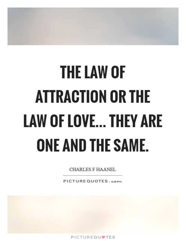 Love Attraction Quotes Classy The Law Of Attraction Or The Law Of Lovethey Are One And The