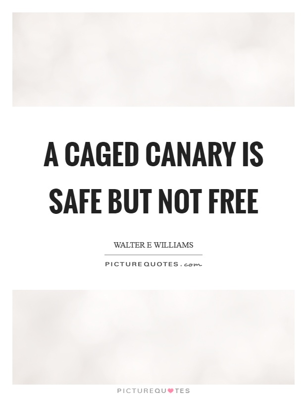 A caged canary is safe but not free Picture Quote #1