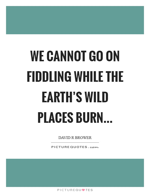 We cannot go on fiddling while the earth's wild places burn Picture Quote #1