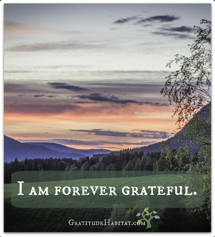 Forever Grateful Quote 2 Picture Quote #1