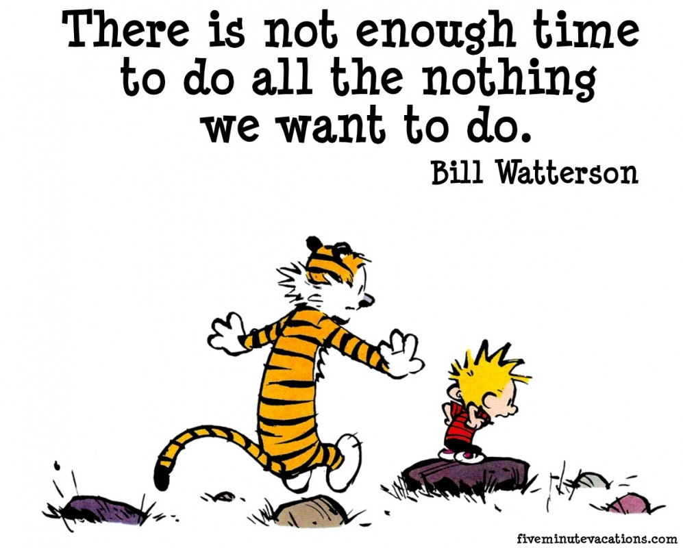 Calvin And Hobbes Quotes & Sayings (41 Quotations