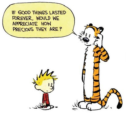 Calvin And Hobbes Quote 2 Picture Quote #1