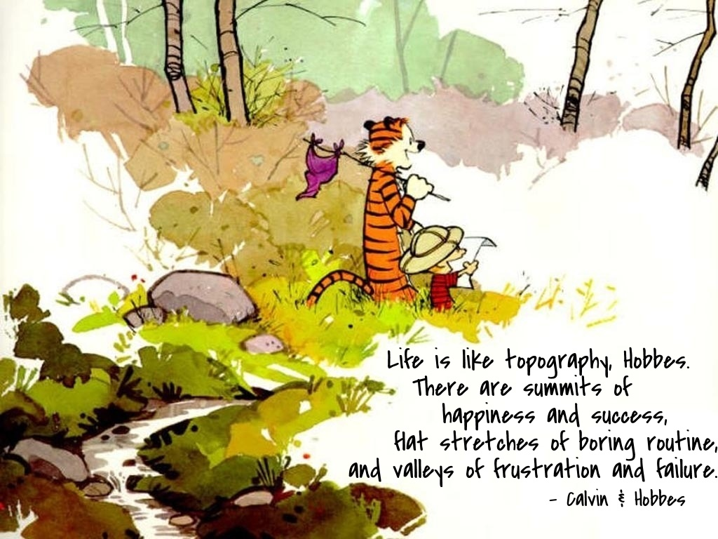 Calvin And Hobbes Quote 9 Picture Quote #1
