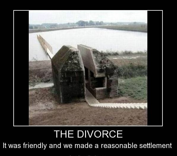 The divorce. It was friendly and we made a reasonable settlement Picture Quote #1
