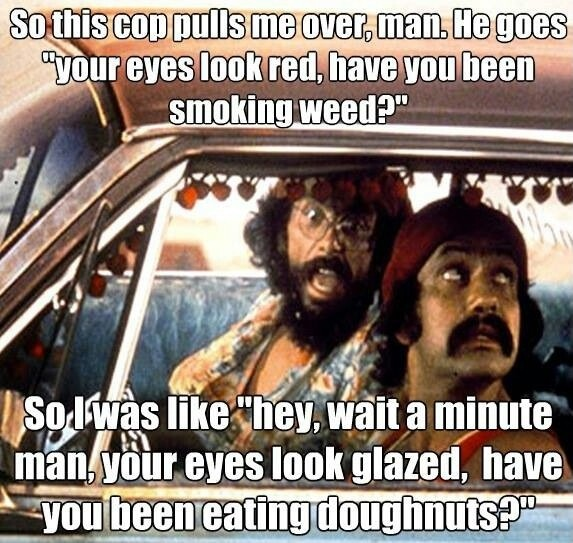 Cheech And Chong Stoner Quote 1 Picture Quote #1
