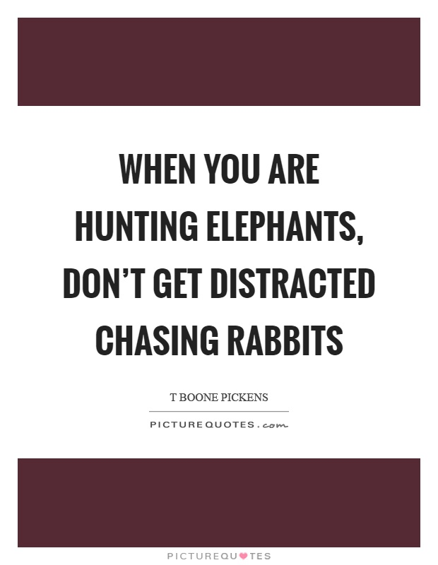 When you are hunting elephants, don't get distracted chasing rabbits Picture Quote #1