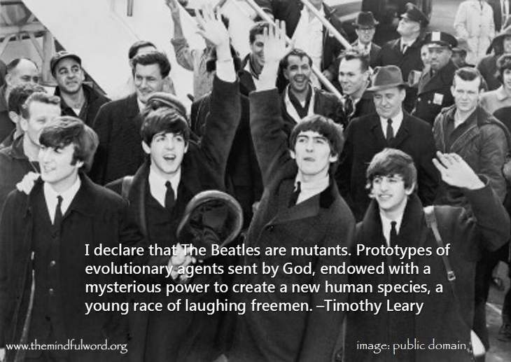 Beatles Quote 12 Picture Quote #1