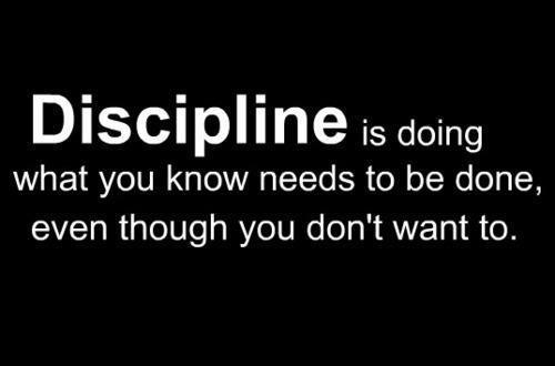Discipline Quote 3 Picture Quote #1