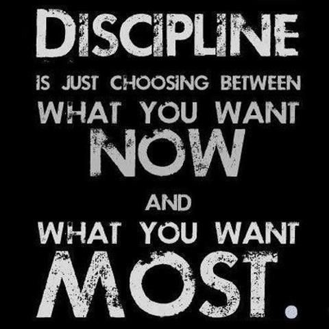 Discipline Quote 4 Picture Quote #1