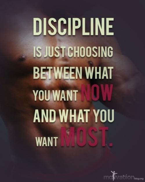 Discipline Quote 6 Picture Quote #1