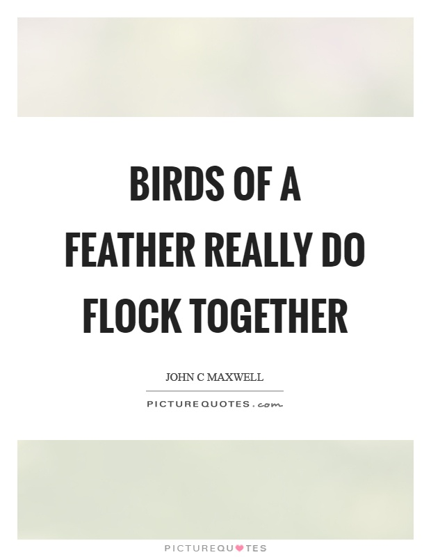 Feather Quotes Feather Sayings Feather Picture Quotes