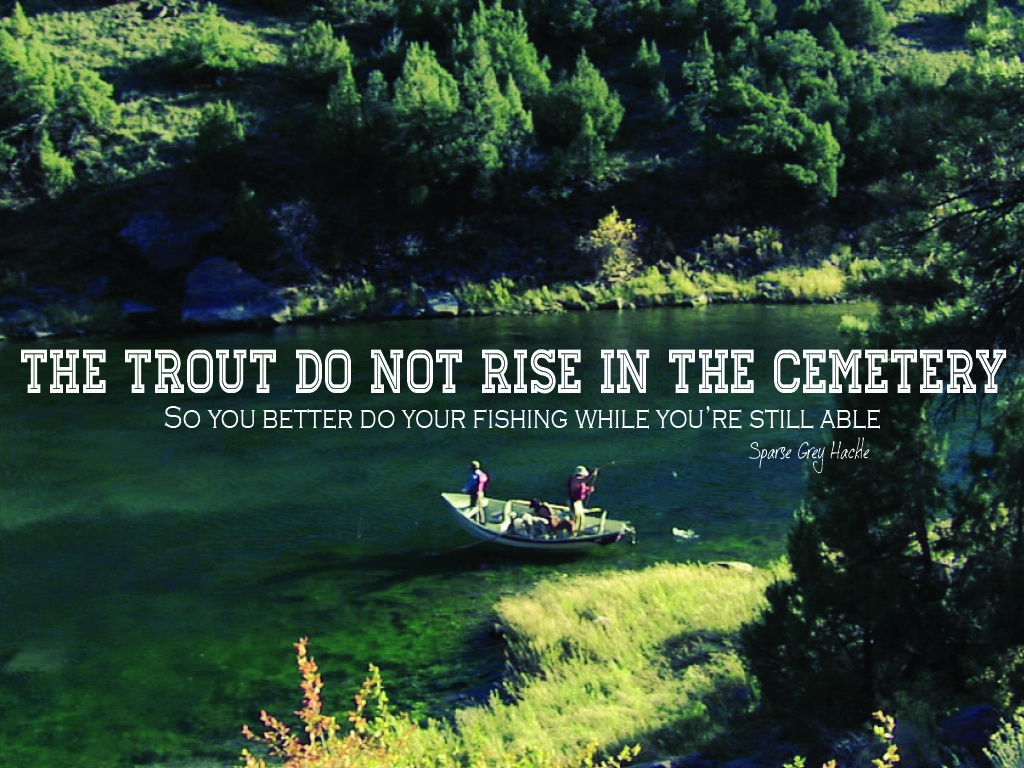 Trout Fishing Quote 1 Picture Quote #1