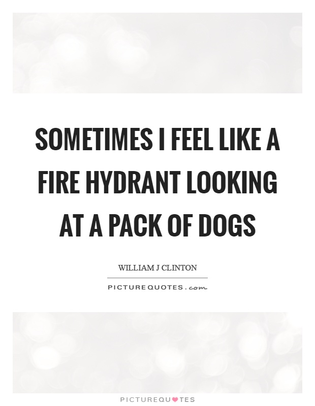 Sometimes I feel like a fire hydrant looking at a pack of dogs Picture Quote #1
