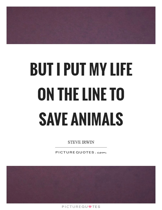 But I put my life on the line to save animals Picture Quote #1