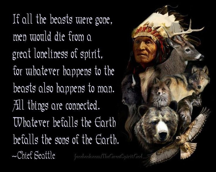 Famous Native American Quote Quote Number 60 Picture Quotes Beauteous Native American Quotes